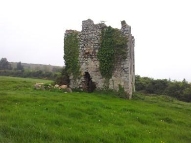 15. Puck's Castle, Rathmichael, Co. Dublin