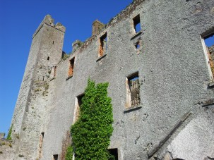 31. Athcarne Castle, Co. Meath