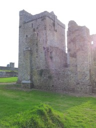 40. Kells Priory, Co. Kilkenny