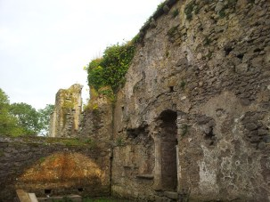 48. Kells Priory, Co. Kilkenny