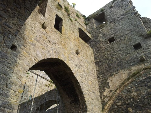 51. Kells Priory, Co. Kilkenny