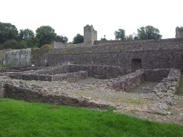 62. Kells Priory, Co. Kilkenny