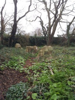 01. The Druid's Judgement Seat, Co. Dublin