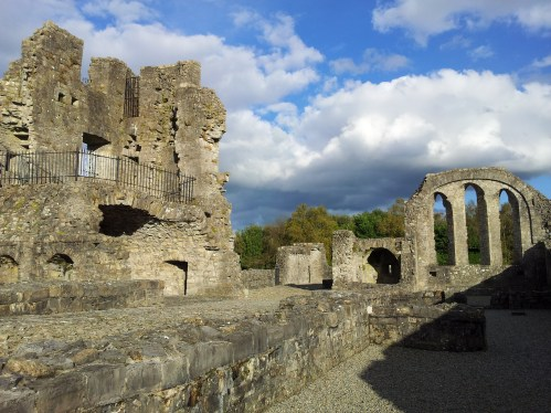 15. The Priory of St. John the Baptist, Co. Meath