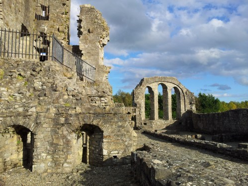 17. The Priory of St. John the Baptist, Co. Meath
