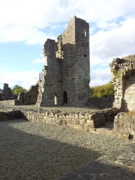 20. The Priory of St. John the Baptist, Co. Meath