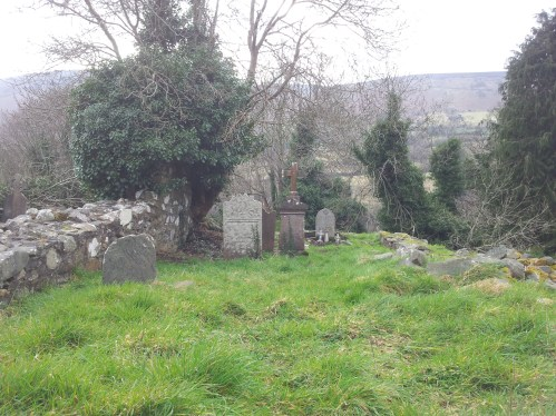 23. St Anne's Burial Ground, Bohernabreena, Co. Dublin