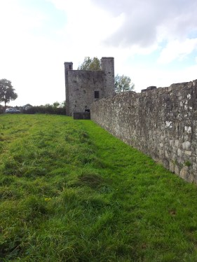 24. The Priory of St. John the Baptist, Co. Meath
