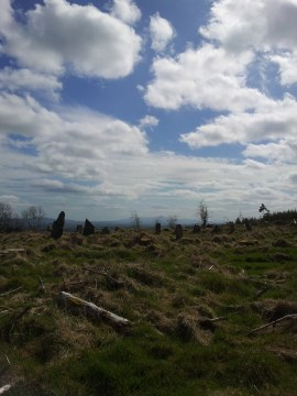 01. Boleycarrigeen Stone Circle, Co. Wicklow
