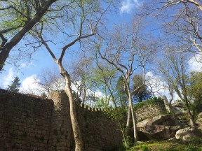 06. Castle of the Moors, Sintra, Portuga