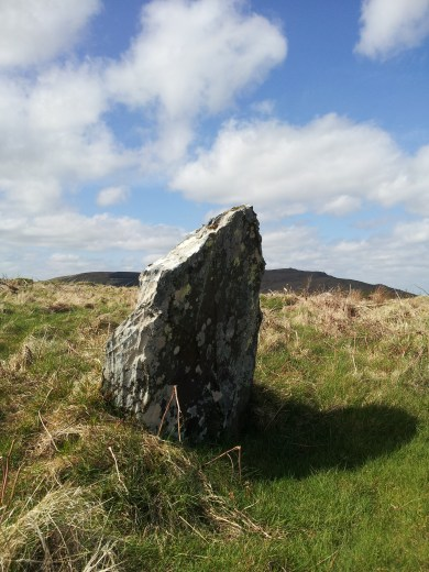 16. Boleycarrigeen Stone Circle, Co. Wicklow