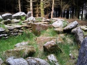 06. Ballyedmonduff Wedge Tomb, Co. Dublin