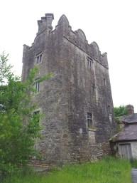 08. Grange Castle, Co. Kildare