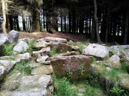 09. Ballyedmonduff Wedge Tomb, Co. Dublin