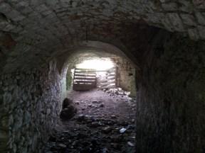 15. Moydrum Castle, Co. Westmeath