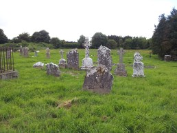 11. Old Downings Church, Co. Kildare