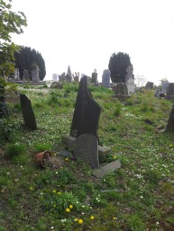 30. Old Tallanstown Graveyard, Co. Louth