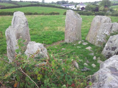 10. Lisnadarragh Wedge Tomb, Co. Monaghan