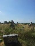 14. Old Longwood Cemetery, Co. Meath