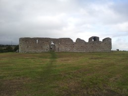 02. Ballymoon Castle, Co. Carlow