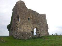 02. Carrick Castle, Co. Kildare