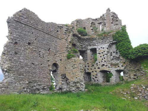 Carrick Castle Kildare Ireland Visions Of The Past