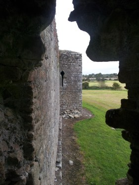 18. Ballymoon Castle, Co. Carlow