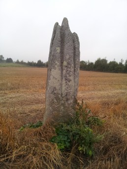 05. Ardristan Standing Stone, Co. Carlow