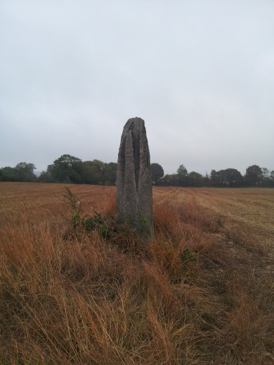 07. Ardristan Standing Stone, Co. Carlow