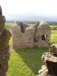 13. Ballyloughan Castle, Co. Carlow