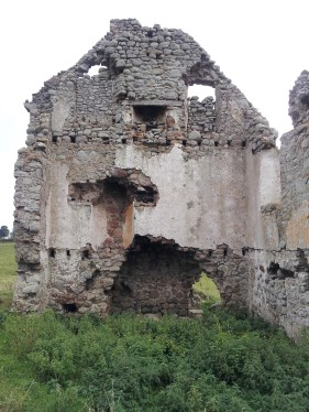 27. Ballyloughan Castle, Co. Carlow