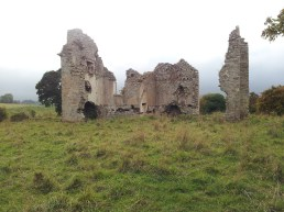 29. Ballyloughan Castle, Co. Carlow