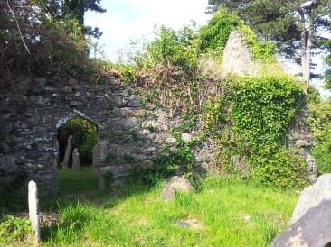 06. Killadreenan Church, Co. Wicklow
