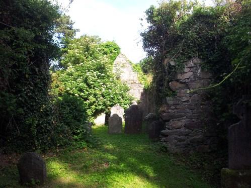 12. Killadreenan Church, Co. Wicklow