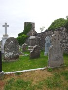 14. Carrick Church , Co. Kildare