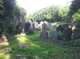 20. Killadreenan Church, Co. Wicklow