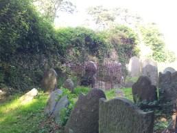 21. Killadreenan Church, Co. Wicklow