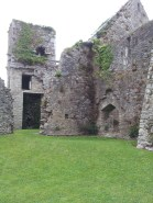 41. Bridgetown Priory, Co. Cork