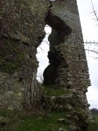 07. Clonmore Castle, Co. Carlow
