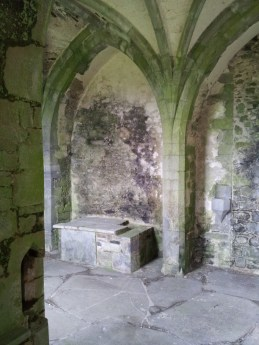 22. Kilcooley Abbey, Co. Tipperary