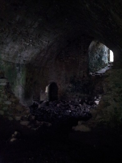 23. Clonmore Castle, Co. Carlow