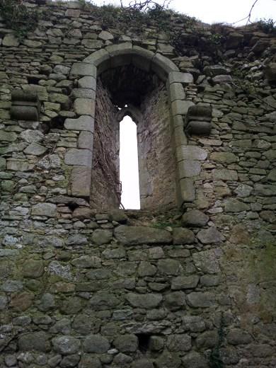 26. Clonmore Castle, Co. Carlow