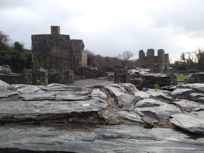 01. Mellifont Abbey, Co. Louth