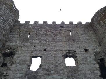 04. Carlow Castle, Co. Carlow