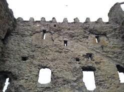09. Carlow Castle, Co. Carlow