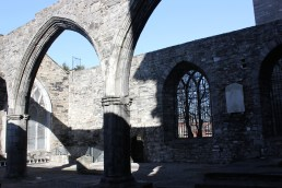 17. St Audeon's Church, Co. Dublin