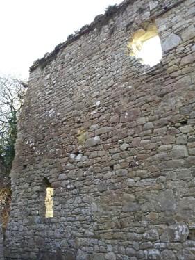17. St Mullin's Monastic Site, Co. Carlow