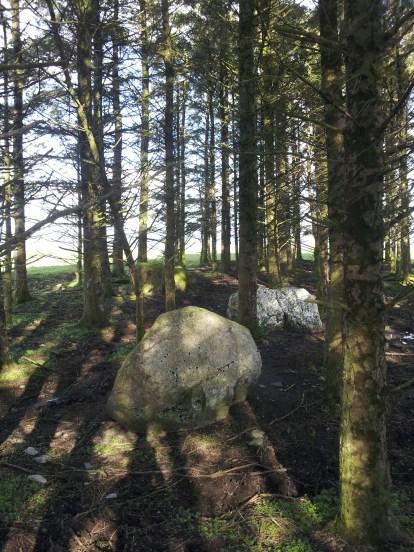 07. Brewel Hill Stone Circle, Co. Kildare