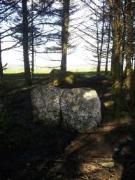 09. Brewel Hill Stone Circle, Co. Kildare