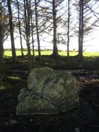 10. Brewel Hill Stone Circle, Co. Kildare